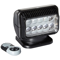 RADIORAY LED Spot Light with Wireless Remote (Black)