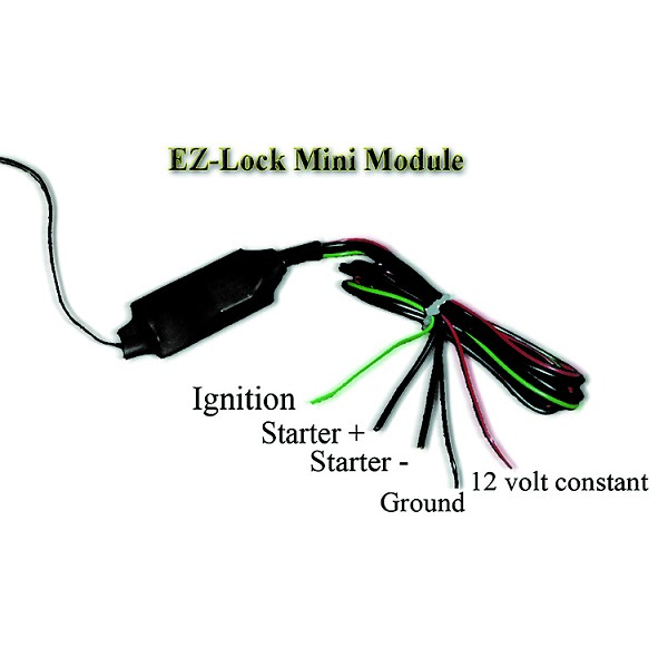 EZ Lock Anti-Theif System- Hardwire